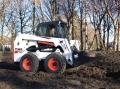 Where to rent LOADER, BOBCAT S630 SKIDSTEER in Fallbrook CA